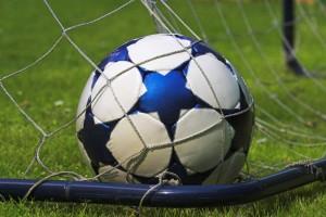 Führungstreffer für den HSV - in Rekordtempo ist der Fußball-Bond restlos ausverkauft. Quelle: Panthermedia/Uwe Karmann