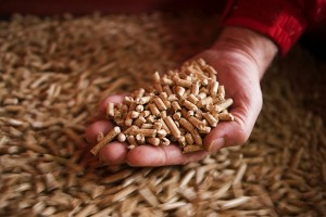 2012 wurde in Italien erstmals ein Pelletbedarf von über 2 Mio. Tonnen erreicht.  Quelle: German Pellets
