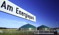 Gärprozess im Hause MT-Energie - Ergebnis: rote Geschäftszahlen. Foto: MT-Energie GmbH