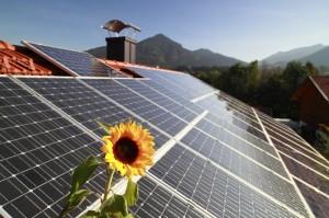 MBB Clean Energy will mit seiner Anleihe 300 Mio. EUR einsammeln. >br>Quelle: Panthermedia/Rupert Trischberger