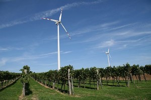 Der Wind scheint günstig: Noch im September soll die WKS-Erstemission öffentlich angeboten werden. Quelle: windpark-goellersdorf.at