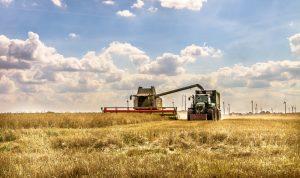 KTG Agrar SE: Vorerwerbsrecht hinsichtlich des litauischen Teilkonzerns nicht ausgeübt